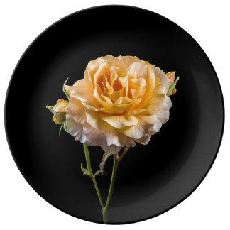 Louça De Jantar Rosa amarelo no preto