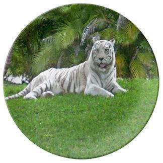 Louça De Jantar Tigre e palmeiras brancos de sorriso