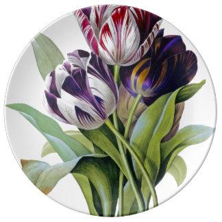Louça De Jantar Trio das tulipas