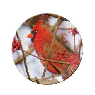Louça Placa cardinal do norte da porcelana