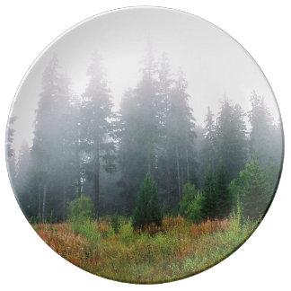 Louça Placa decorativa da foto da manhã da madeira de