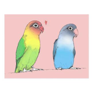 Lovebirds de um cartão diferente da cor