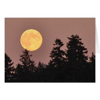 Lua cheia agosto de 2013 - cartão da arte de
