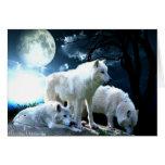 Lua completa do lobo cartões