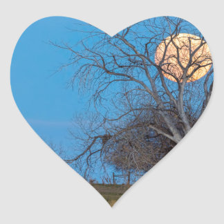 Lua mega do castor adesivo coração