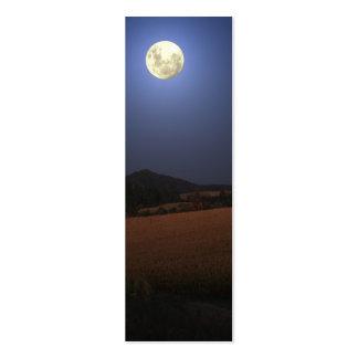 Lua sobre o mini marcador do milho cartão de visita skinny