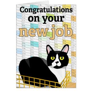 """Lucas """"o cartão do trabalho novo"""" do gato"""