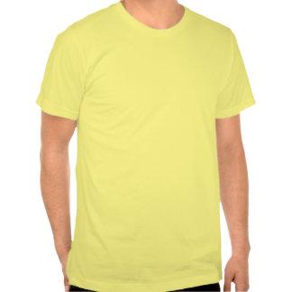 Lugar de nascimento do gênio (vermelho do vintage) t-shirt