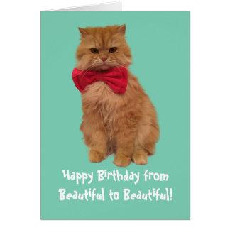 Luigi o cartão de aniversário do gato do leão