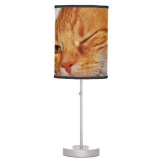 Luminária Gato alaranjado - gato de Papai Noel - Feliz Natal