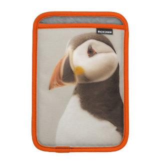 Luva De iPad Mini Exemplo do papagaio-do-mar