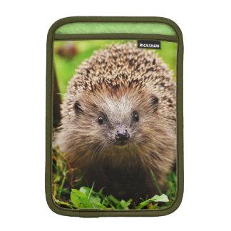 Luva De iPad Mini Ouriço pequeno bonito na floresta