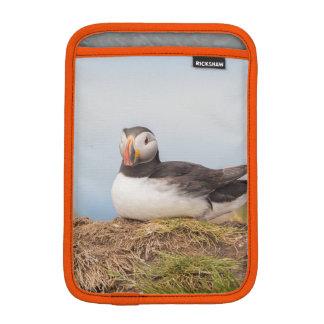 Luva iPad Mini Exemplo do papagaio-do-mar