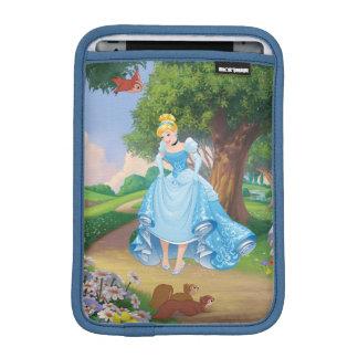 Luva Para iPad Mini Deslizadores do vidro de Cinderella |