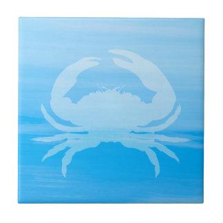 Luz - água do mar azul com caranguejo