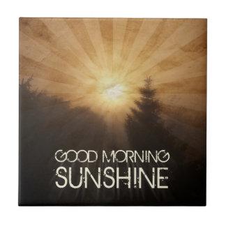 Luz do sol do bom dia azulejo de cerâmica