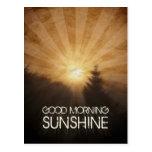 Luz do sol do bom dia cartoes postais