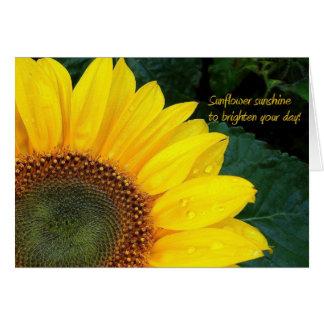 Luz do sol do girassol!  Cartão do ~