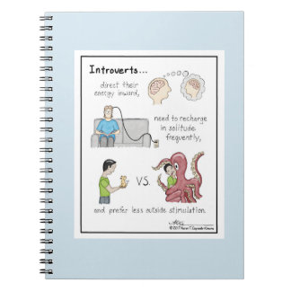 Luz introvertida dos princípios - caderno azul