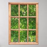 Luz solar com a opinião das folhas de uma janela poster