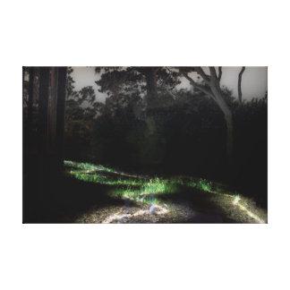 luzes da floresta impressão de canvas envolvida