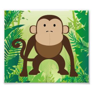 Macaco bonito impressão de foto