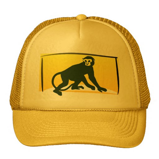 Macaco Bonés