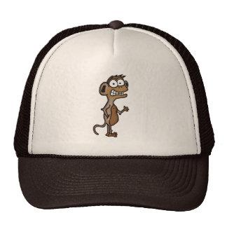 Macaco de ondulação bone