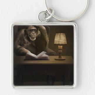 Macaco do chimpanzé do macaco chaveiro