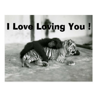 Macaco e tigre engraçados do dia dos namorados cartão postal