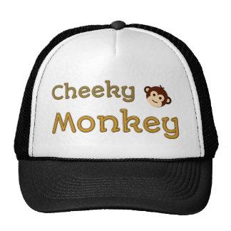 Macaco insolente boné
