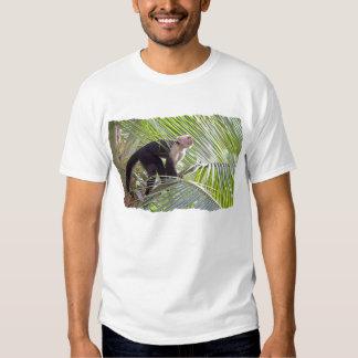 Macaco na foto de bambu da selva camisetas
