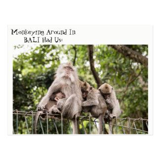 Macacos sonolentos no cartão de Bali