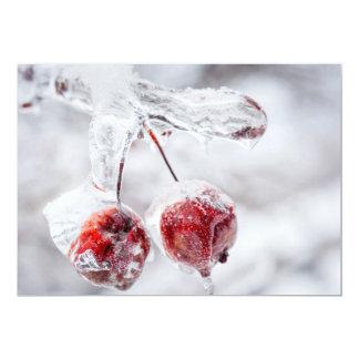 Maçãs de caranguejo congeladas no ramo gelado