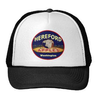 Maçãs de Hereford Washington Boné
