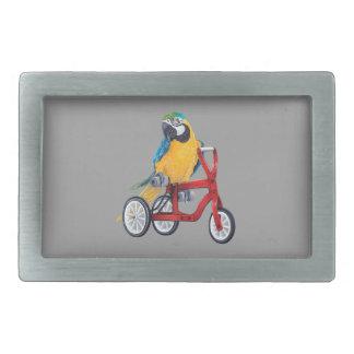 Macaw do papagaio na bicicleta do triciclo