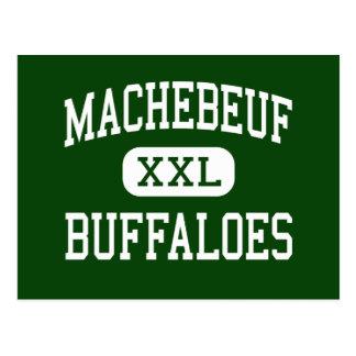 Machebeuf - búfalos - católico - Denver Colorado Cartao Postal