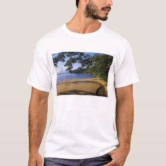 Madagascar, reserva especial Nosy de Mangabe, Camiseta