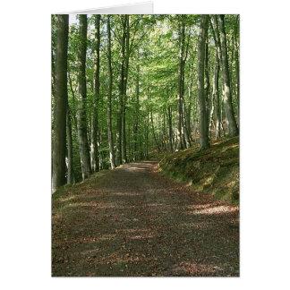 Madeira do país das fadas cartão comemorativo