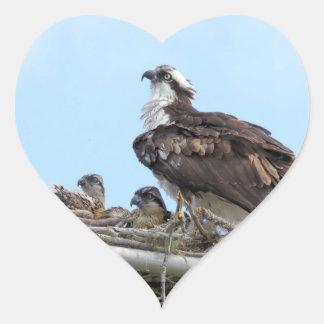 Mãe do falcão do Osprey e etiquetas dos bebês
