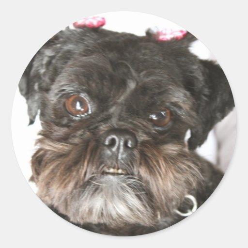 Mae o ewok-tipo cão adesivos redondos