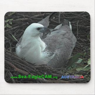 Mãe que senta-se em 2 ovos Mousepad 2013 horizonta