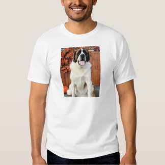 Mae - St Bernard Photo-12 T-shirts