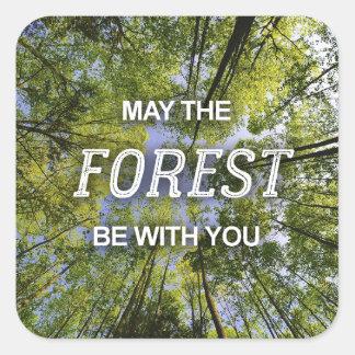 Maio a floresta seja com você folha das etiquetas