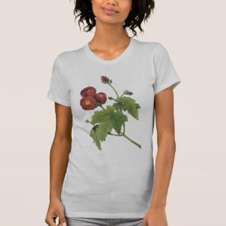 mallow roxo (purpurea do Malva) por Redouté T-shirts