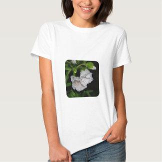Malvales Tshirts