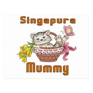 Mamã do gato de Singapura Cartão Postal
