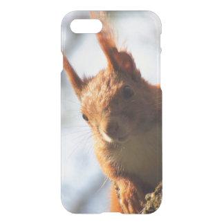 Mamífero do roedor do esquilo capa iPhone 7