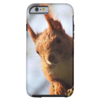 Mamífero do roedor do esquilo capa tough para iPhone 6