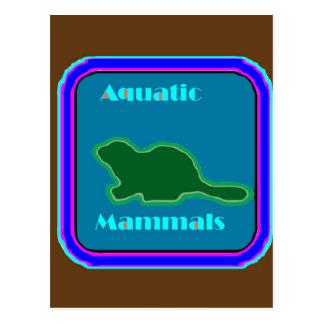 Mamíferos aquáticos - amantes de natureza cartão postal